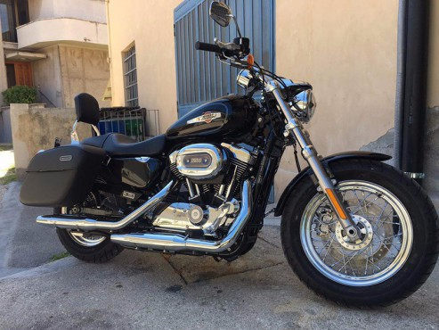 Harley Davidson custom for rent